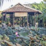 SEN THIEN QUAN –(Lotus Meditation Restaurant)